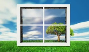 depositphotos_35831793-Trees-and-nature-through-the-window
